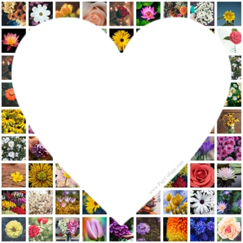 Heart photo grid collage with pictures placed outside the heart shape as well as masked using the heart shape