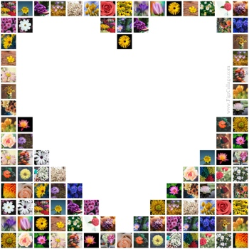 Heart photo grid collage with pictures placed outside the heart shape