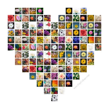 Heart shape photo grid collage