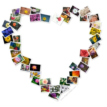 Heart photo pile collage with pictures placed at the heart edges only