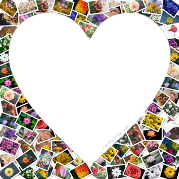 Heart photo pile collage with pictures placed outside the heart shape as well as masked using the heart shape