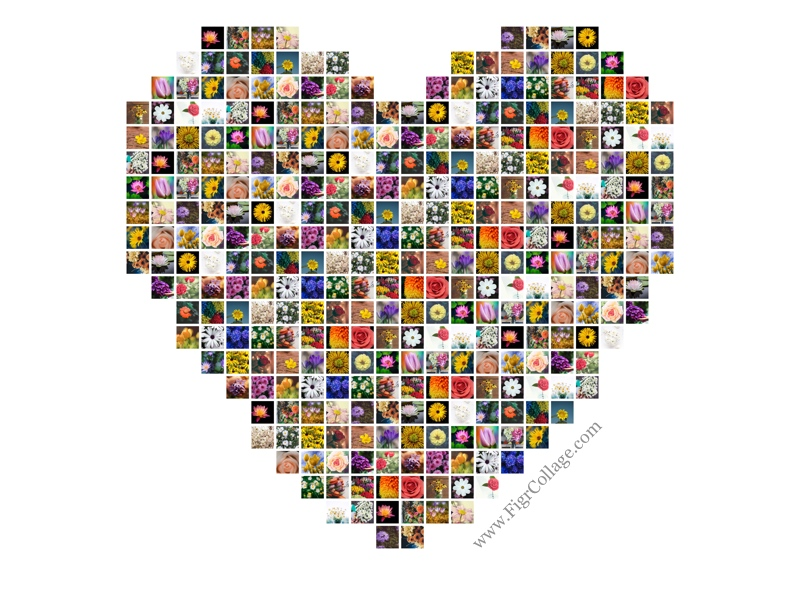 Heart Shaped Photo Grid Collage