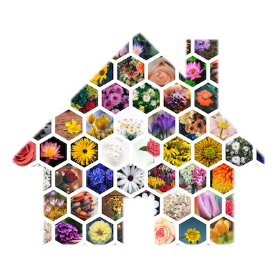 Shape collage with hexagonal cell style