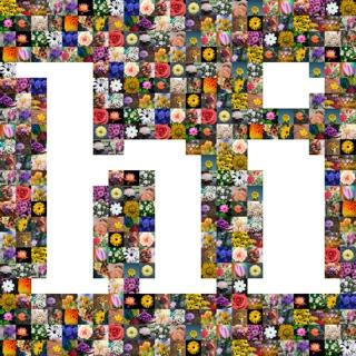 hi word shape collage
