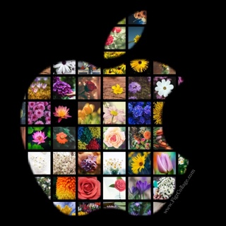 Shape collage with photos arranged to form Apple logo