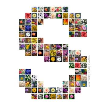 Alphabet photo grid collage