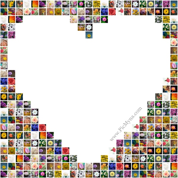 Heart collage with photos places outside heart shape