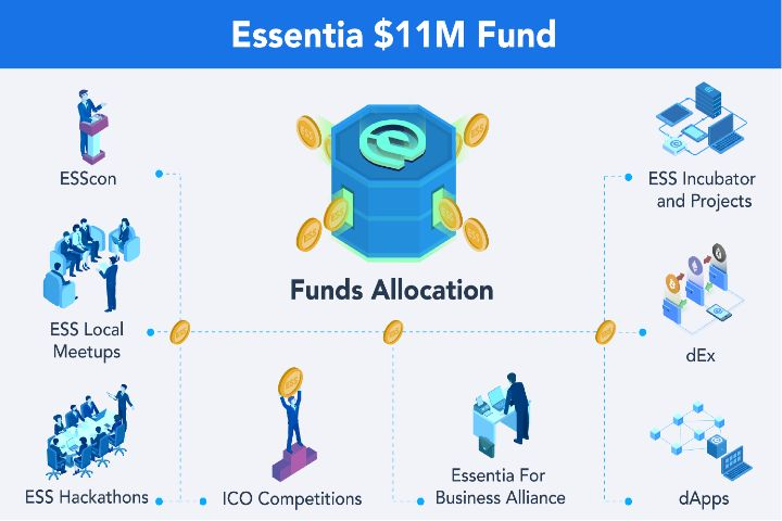 Essentia image 3