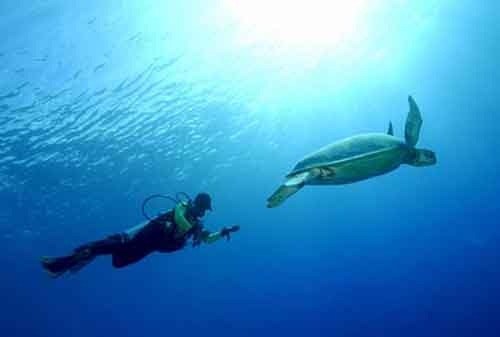 Asyiknya, Liburan ke Pulau Derawan nan Menawan 05 - Finansialku