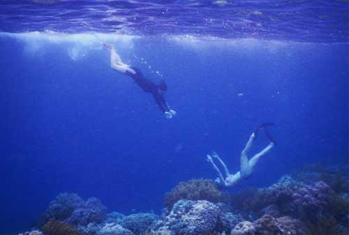 Save Your Trip! Liburan Terbaik di Pulau Wakatobi 02 - Finansialku