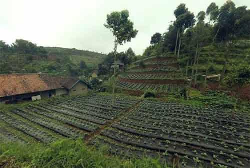 33 Tempat Wisata Bandung Paling Hits Wajib Dikunjungi 25 - Finansialku