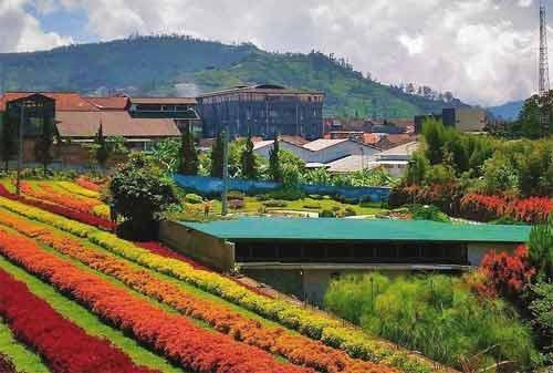 33-Wisata-Lembang-Bandung-28.-Rainbow-Garden