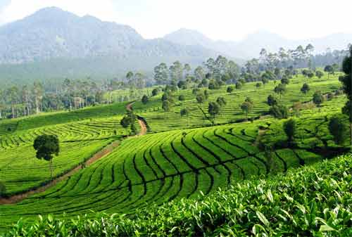 33 Tempat Wisata Bandung Paling Hits Wajib Dikunjungi 31 - Finansialku