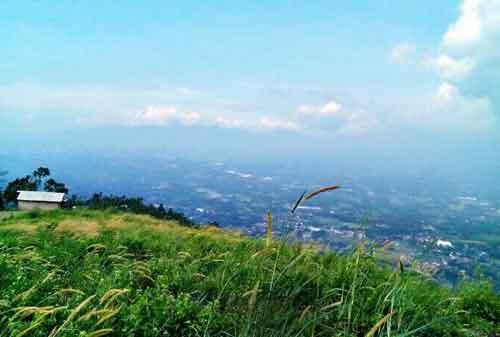 Wisata Bogor - 13 Bukit Alesano - Finansialku