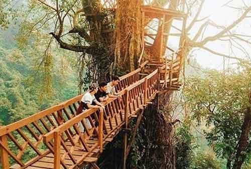 Wisata Bogor - 2 Rumah Pohon & Jembatan Kayu Gantung Curug Ciherang Jonggol - Finansialku