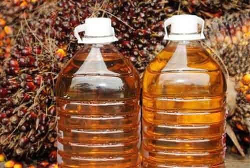 Harga CPO Merosot Inilah Strategi Ke Depannya! 04 Impor Minyak Kelapa Sawit - Finansialku