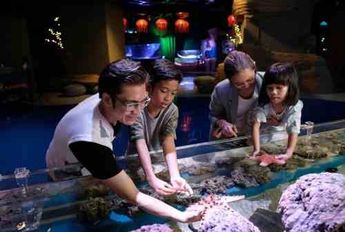 Semua Hal yang Perlu Kamu Tahu Tentang Jakarta Aquarium, Cek Harga Tiketnya! 03 - Finansialku