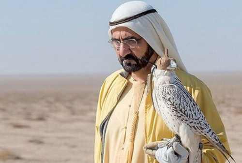 Mohammed bin Rashid Al Maktoum 08 - Finansialku