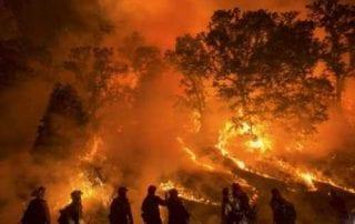Kebakaran Hutan dan Lahan (Karhutla) Turut Membakar Saham 01 - Finansialku