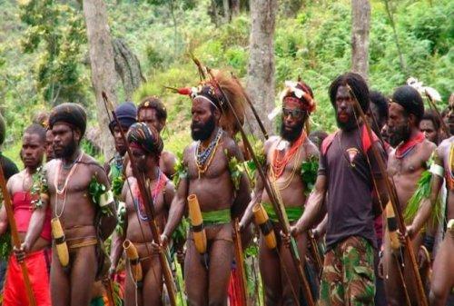 Pakaian Adat Papua - Koteka