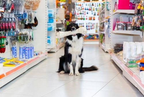 Pet Shop 03 - Finansialku