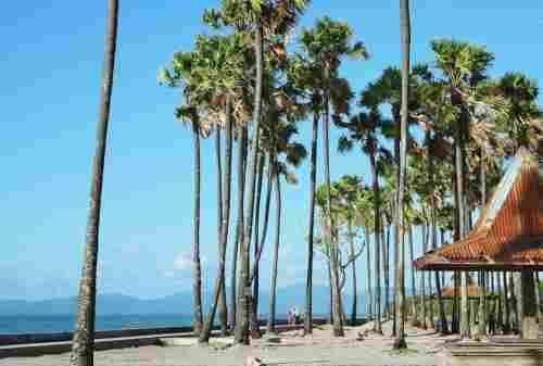 Kamu Backpacker Yuk Kunjungi 5+ Tempat Wisata di Kupang Ini 01 - Finansialku