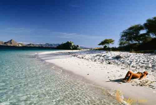 Attractions You Must Visit In Flores Indonesia 12 - Finansialku