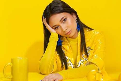 Kisah Sukses Niki Zefanya, Penyanyi Indonesia yang Sukses di Amrik 03