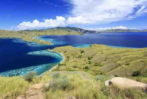 Komodo Island, The Other Side Of Paradise In Flores 07 - Finansialku