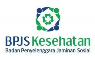 Sudah Tahu Fungsi SIPP BPJS Kesehatan Simak di Sini 02