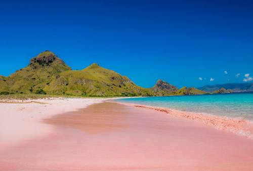 Komodo Island, The Other Side Of Paradise In Flores 04 - Finansialku