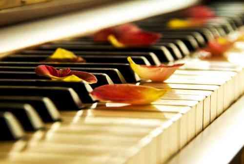 Download Instrumen Musik Klasik yang Cocok Untuk Belajar 03 - Finansialku