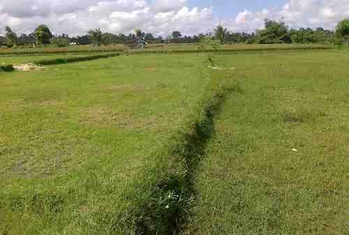 Ini Lho Keuntungan Punya Investasi Tanah Kavling! 02 - Finansialku