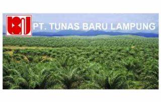 TBLA Ubah Klasifikasi Industri Ke Consumer Goods, Kenapa_ 01