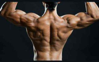 Cari Tahu Cara Melatih Otot Punggung di Rumah yang Efektif! 02 - Finansialku