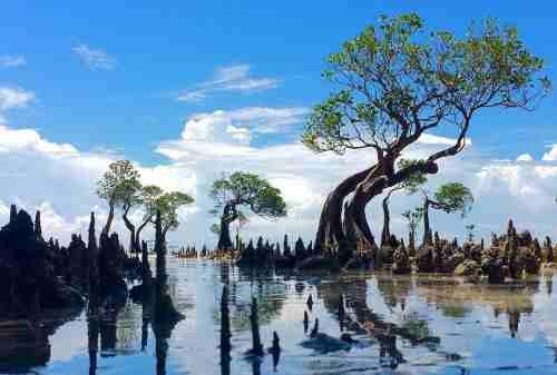 6 Fascinating New Gems in Sumba Island Worthy of Exploration 02 - Finansialku