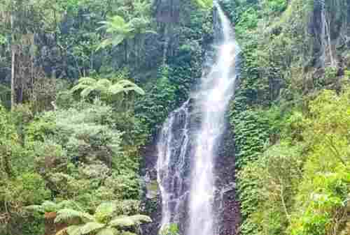 8 Thrilling Activities to Do in Three Color Lakes, Kelimutu 03 - Finansialku