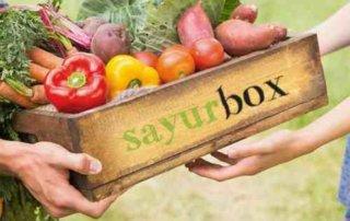 Astra International Guyur Dana Segar Ke Sayurbox 02