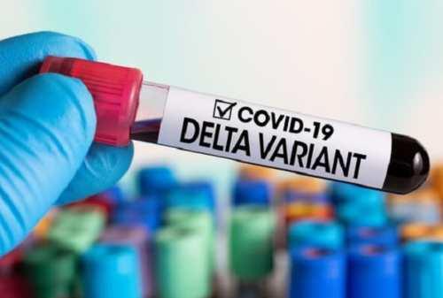 Wajib Lakukan Ini Saat Terinfeksi Virus Corona Varian Delta 01