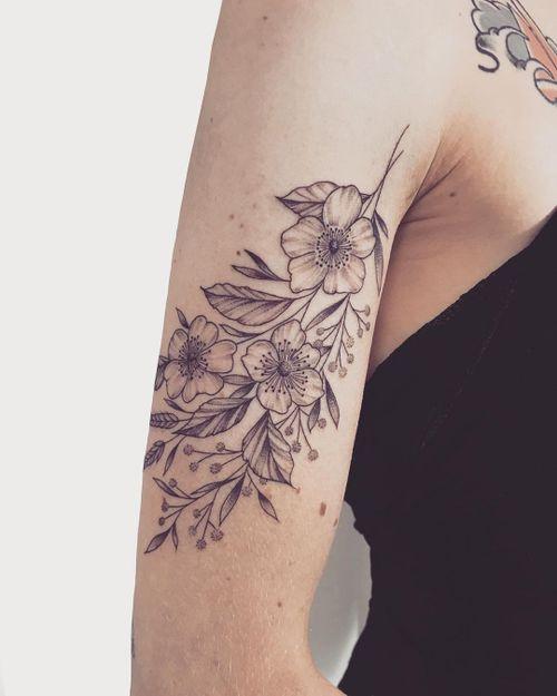 mia_black_rose_