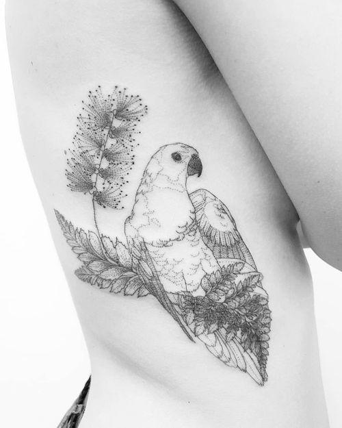 birdy_owen