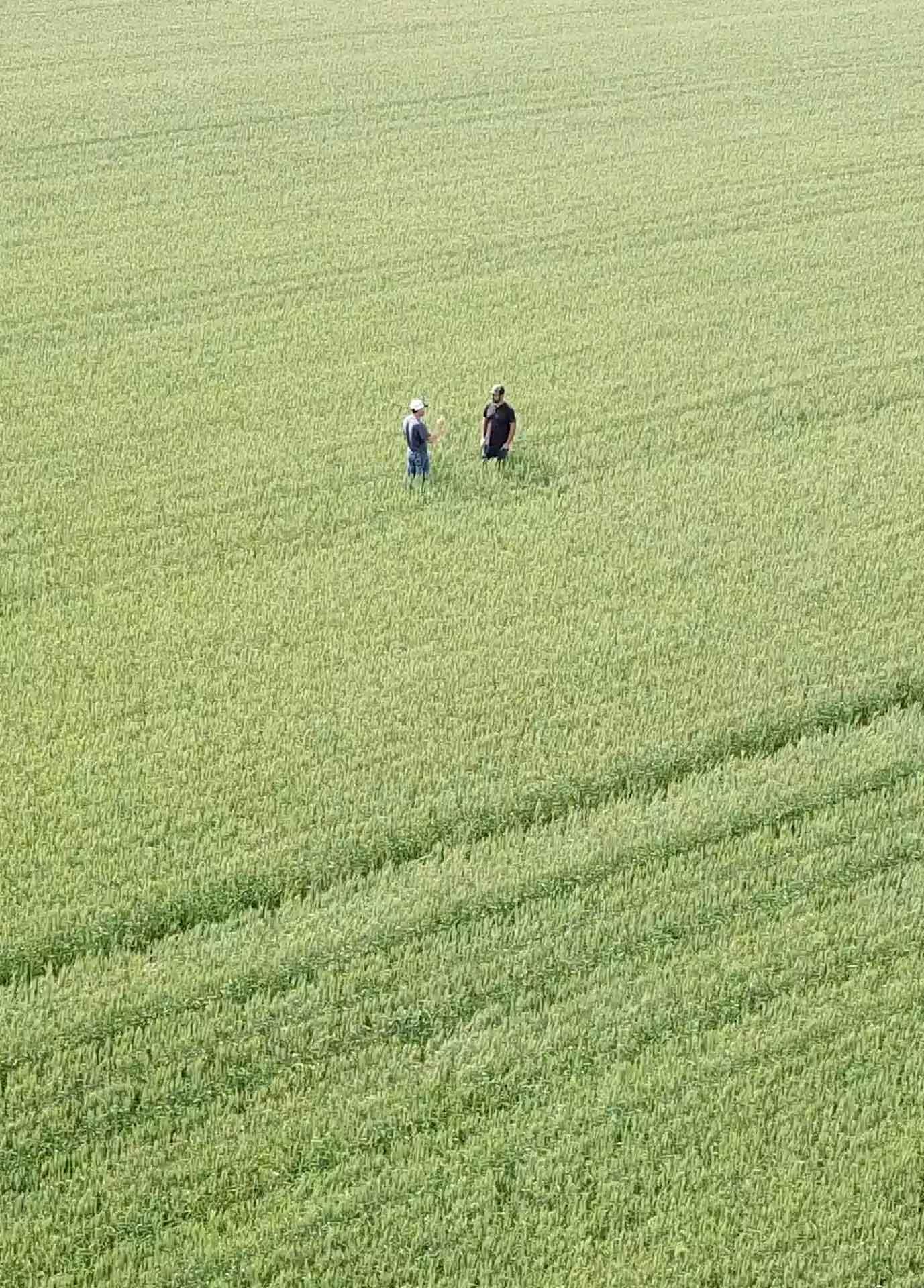Background image of men standing in field