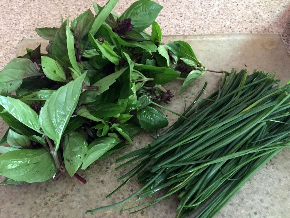 10 Amazing Benefits Of Collard Greens For Skin Hair And Health