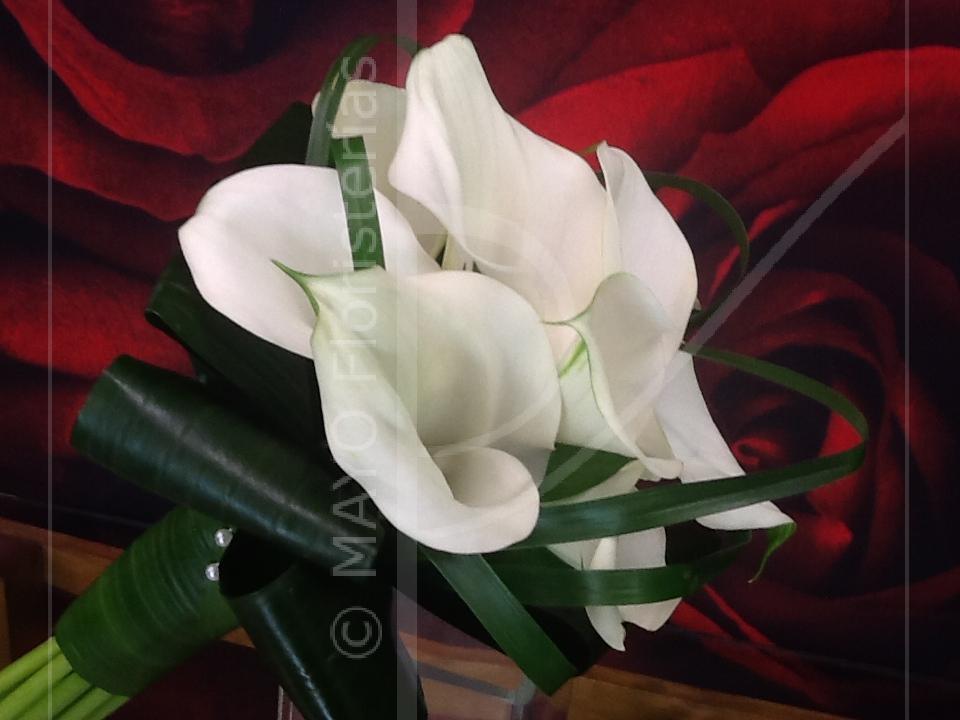 Ramo de Novia de calas blancas con lazos de hojas de Nolina y Alpidistra.