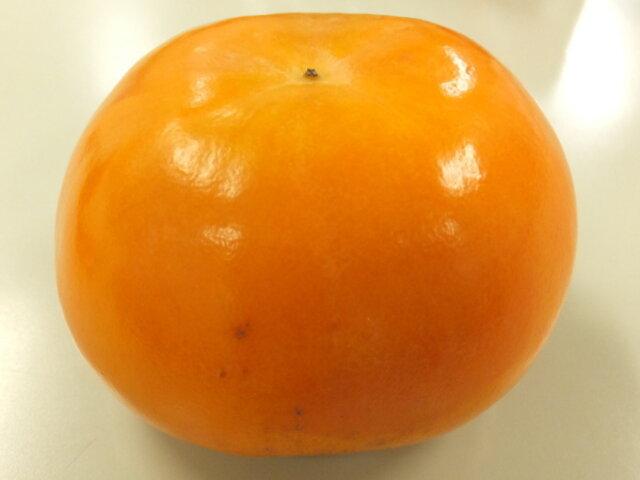 林柿 「富有柿」