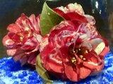 Camellia Kagoshima