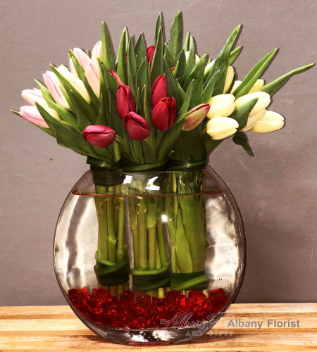 Simply Tulips - A12