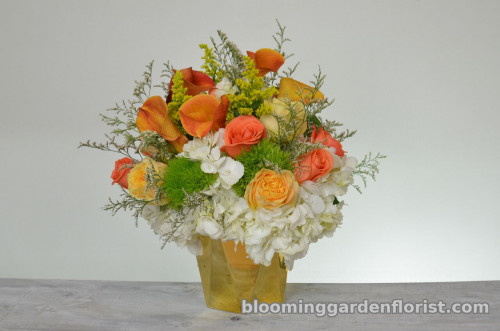 My Favorite Peach Roses - B36