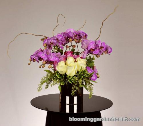 I Love Lavender - B19