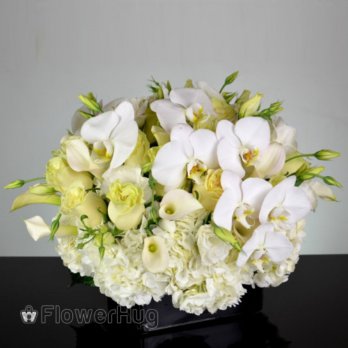 Contempo Orchids and Calla lilies Design - B76